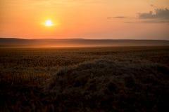 En härlig guld- solnedgång på ett höfält arkivfoton