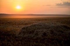 En härlig guld- solnedgång på ett höfält royaltyfria foton