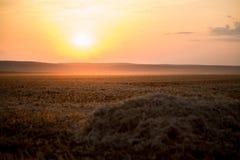 En härlig guld- solnedgång på ett höfält royaltyfri bild