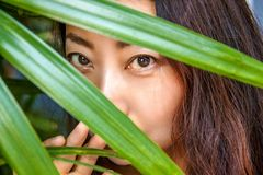 En härlig kvinna döljer bak palmblad Östlig skönhet- och hudomsorg royaltyfri foto