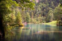 Lake i träna Royaltyfria Foton