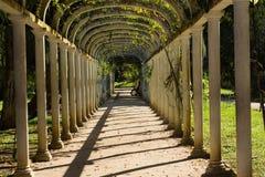 En härlig passage i botanisk trädgård Arkivfoto