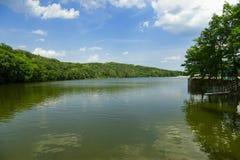 En härlig plats från en sjö, sommar arkivbilder