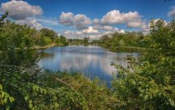 En härlig sikt är inte en skog och en flod på en solig dag för sommar Arkivfoton