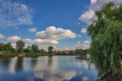 En härlig sikt är inte en skog och en flod på en solig dag för sommar Arkivfoto
