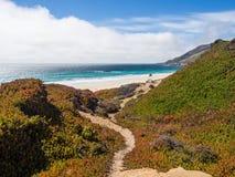 En härlig sikt av Kaliforniens kustlinje längs huvudväg 1, stora Sur Arkivfoto