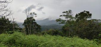 En härlig sikt av en kulle som täckas av moln arkivbilder