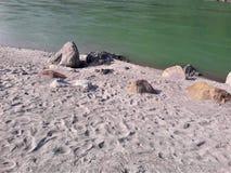 En härlig sikt av en strandsida & vaggar royaltyfria foton