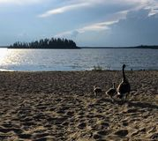 En härlig sikt från stränderna av Astotin sjön med en familj royaltyfria bilder