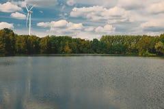 En härlig skog på vattnet Arkivfoto