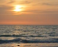 En härlig solnedgång över golfen av Mexico på indier vaggar stranden, Florida royaltyfri fotografi