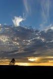 En härlig solnedgång Royaltyfri Foto