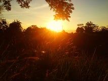 En härlig solnedgång Arkivfoton