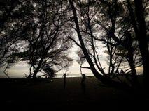 En härlig solnedgång i den Goa Cemara stranden Arkivbilder
