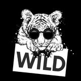 En härlig tigergröngöling med exponeringsglas och ett band Vektorillustration för en vykort eller en affisch, tryck för kläder oc vektor illustrationer