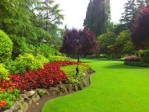 En härlig trädgård Royaltyfri Fotografi