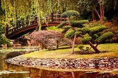 En härlig trädgård i kinesisk stil royaltyfri foto