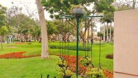 En härlig trädgård i staden av Lima, Peru Royaltyfria Foton