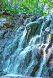 En härlig vattenfall i skogdjurlivet, vattenfall i en öde skogtaiga Royaltyfri Fotografi