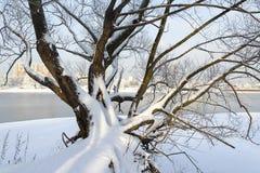 En härlig vinter landskap Royaltyfri Fotografi