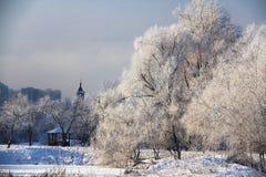 En härlig vinter landskap Royaltyfria Bilder