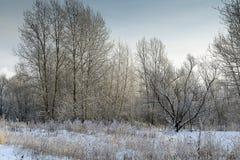 En härlig vinter landskap Arkivbild