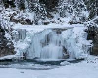 En härlig vintrig vattenfall som omges av snö-täckte träd fotografering för bildbyråer