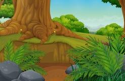 En härliga gröna Forest Landscape royaltyfri illustrationer