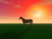 En häst är betande i en äng Royaltyfri Fotografi