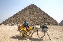 En häst och en barnvagn framme av pyramiden av Khufu i Kairo i Egypten Arkivfoto