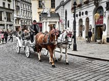 En hästdragen vagn som passerar inom den Hofburg slotten royaltyfria bilder