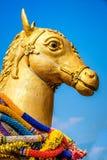 En häststaty Arkivfoto