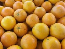 En hög av apelsiner Arkivbilder