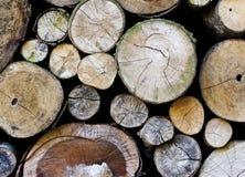 En hög av den klippta wood stubben Arkivfoto