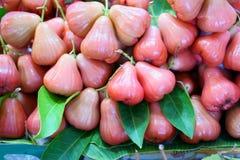 En hög av det rosa rosa äpplet vet som det Jawa äpplet eller vaxäpplet royaltyfri fotografi