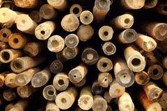 En hög av klippt trä för konstruktion Royaltyfri Bild