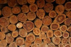 En hög av naturliga träjournaler Arkivbild