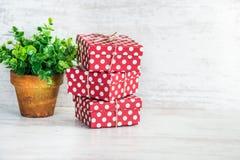 En hög av röda prickiga gåvaaskar och en grön blomma i en lantlig keramisk kruka Vit träbakgrund, kopieringsutrymme Royaltyfria Bilder