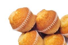 Vanliga muffiner Royaltyfri Foto