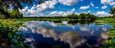 En hög upplösning, färgrikt panorama- skott av den härliga sjön 40-Acre i sommartid Royaltyfri Bild