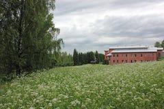 En högskolabyggnad i en äng för vit blomma arkivfoton