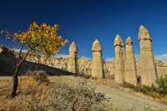 En höst är i Cappadocia Royaltyfria Foton