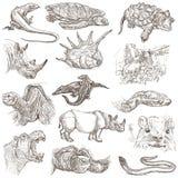 En hand dragen packe, linje konst - djur Royaltyfri Foto
