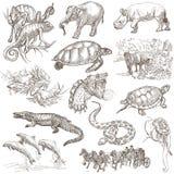 En hand dragen packe, linje konst - djur Royaltyfria Bilder