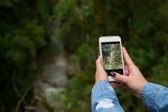 En hand för kvinna` s med en manikyr tar ett foto av skoglandskapet fotografering för bildbyråer