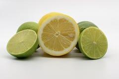 En hand mycket av citroner och limefrukter royaltyfri bild
