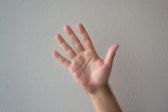 En hand som räknar med en vit bakgrund Royaltyfri Fotografi