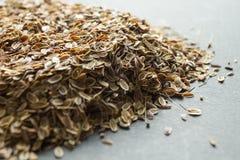 En handfull torkade organiskt dillfr?, alternativ medicin arkivfoton