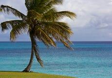 En havsikt av härliga soliga Barbados Arkivfoton