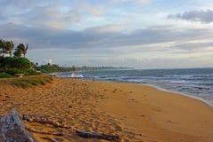 En hawaiansk strand - Kauai Royaltyfria Bilder